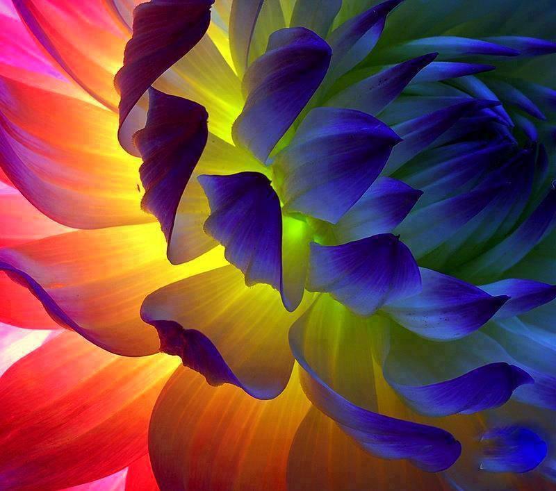 couleurs-2